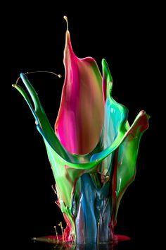 Color Micro photography of colored milk splash -- Doorways High Speed Photography, Micro Photography, Splash Photography, Art Photography, Photography Basics, Outdoor Photography, Wildlife Photography, Wallpaper Flower, Foto Macro