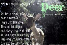 Native American Astrology: Deer, Birthdate: May 21 - Jun 20 (John Native American Zodiac Signs, Native American Animals, Native American Symbols, Native American History, Spirit Animal Totem, Animal Spirit Guides, Animal Totems, Celtic Astrology, Animal Symbolism