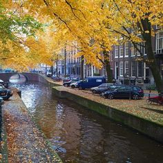 The parks and canals of Amsterdam are made of autumn exploration. Photo courtesy of oregonjhawk on Instagram.