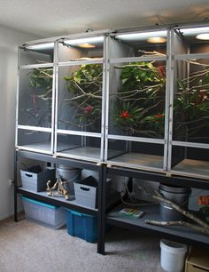 Chameleon cages. Reptile screen cages with a little bit of form and function.
