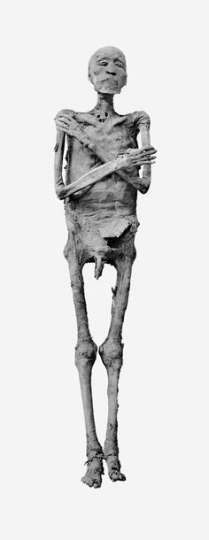 Ramses IV Ancient Egyptian Art, Ancient Aliens, Ancient History, King Tut Tomb, Egypt Mummy, Egyptian Mummies, Archaeological Discoveries, Anubis, Ancient Artifacts