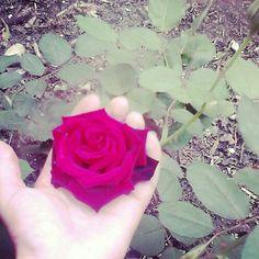 #Magic #Affection #Love