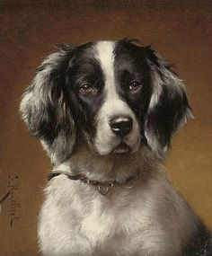 Spaniel : Carl Reichert : circa 1900 : Art Print Suitable for Framing Animal Paintings, Animal Drawings, Love My Dog, Watercolor Canvas, Medium Dogs, Dog Portraits, Dog Art, Beautiful Dogs, Dog Pictures