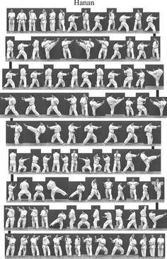 Bitmap_in_3i_Hanan Chinese Martial Arts, Mixed Martial Arts, Shotokan Karate Kata, Goju Ryu Karate, Karate Styles, Japanese Karate, Samurai, Karate Dojo, Martial Arts Weapons