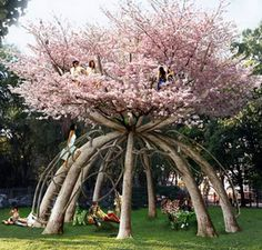Behold the ultimate tree house! What: The Patient Gardener project using ten Japanese cherry trees Where: School campus in Milan, Italy Who: Designed by Swedish architects Visiondivision Why: A two-story treehouse study retreat for students. The vision: a Dream Garden, Garden Art, Garden Plants, Garden Design, House Design, Japanese Cherry Tree, The Secret Garden, Unique Trees, Unique Plants