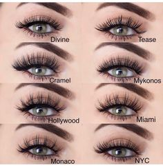 Understanding Eyelashes Extensions and False Eyelashes! Applying False Eyelashes, False Lashes, Ardell Lashes, Koko Lashes, Eyelash Extensions Styles, Make Up Inspiration, Perfect Eyes, Skin Makeup, Beauty Makeup