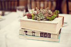 Top 10 Ideas for Reusing Old Books