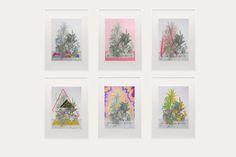 My Little Garden. Composition.2012    Azucena González