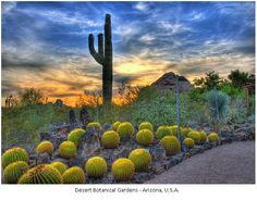There are a lot of places to visit in Arizona because it is a state full of natural wonders and parks. Arizona has so much to offer and it would be a shame not to take advantage and visit them.