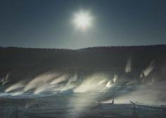 Yellowstone seascape