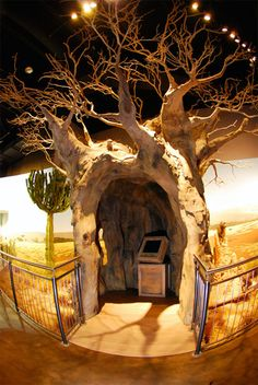 20' tall walk through baobab tree.   Globeology at Wildlife Experience Museum Parker, CO
