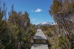 Fiordland, Milford Sound et Key Summit | Nouvelle-Zélande | Blog voyages ➡ Prenez Place