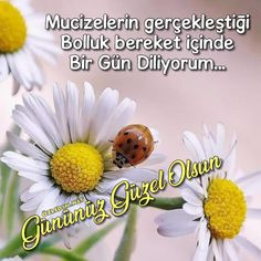 Çiçekli Günaydın Resimleri Ve Günaydın Sözleri | Ozledim.Net Messages, Plants, Emoji, Plant, Text Posts, Emoticon, Planting, Planets