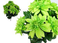 lime green dahlias