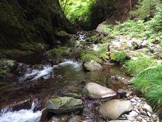 Akikawa river