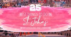 There are so many great things to do in St. John's, Newfoundland that you're going to want to extend your trip. So here's your key to our city: a definitive guide to St. John's as put together by a local. Newfoundland Canada, Newfoundland And Labrador, George Street Festival, Stuff To Do, Things To Do, The Great Escape, Travel Oklahoma, Canadian Rockies, Whale Watching