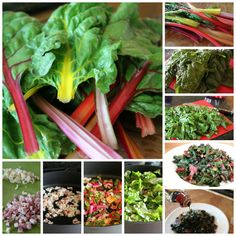 The Best Swiss Chard