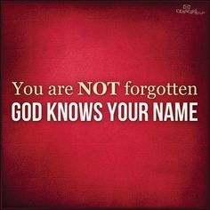 """""""And the very hairs on your head are all numbered. So don't be afraid; you are more valuable to God than a whole flock of sparrows,"""" Luke 12:7."""