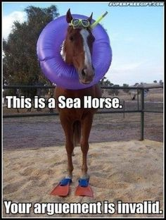 Horse Puns - funniest memes in the Stud Horse puns are best for horse lovers and for those who like horses, jokes, memes, funny pictures and puns. Just check this funny gallery. Horse Puns, Funny Horse Memes, Funny Horse Pictures, Funny Shit, Funny Animal Jokes, Funny Horses, Cute Horses, Really Funny Memes, Cute Funny Animals