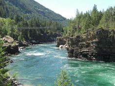 9) Kootenai River—British Columbia, Montana, and Idaho    THREAT: Open-pit coal mining AT RISK: Clean water and fish and wildlife habitat One of our country's wildest rivers, the Kootenai River provides critical habitat for several rare and threatened native fish species, as well as wildlife like grizzly bear and woodland caribou. However, the river is threatened by runoff and waste from current mining and proposed expansions of five open-pit coal mines along the Elk River in British…