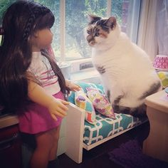 Grace has a guest.  #joy2everygirl  #cat #catsofinstagram