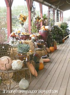 Drinking From My Saucer {'cause my cup has overflowed!}: Love the hanging cone filled with gourds (spotted at a local garden center)
