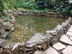Fonte (Tom Jobim) de água cristalina - Horto florestal do Catetinho, primeira residência do Presidente da República em Brasília.