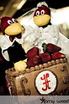 Basically our theme is a Gamecock Wedding (Garnet and Black)