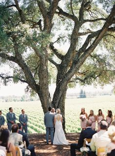Rustic Elegant Wedding at Healdsburg Country Gardens