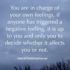 You Are in Charge of Your Own Feelings A lot of people can push your buttons and though you can't control their behavior you can control how much you allow it to affect you.
