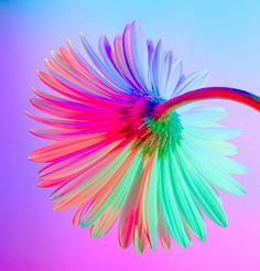 neon flowers flower boscher claire simple direction inspiration painting grid drawing easy theinspirationgrid mountain