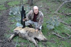Texas Reforms Feral Pig Law - No State License Required to Hunt Texas Hunting, Pig Hunting, Hunting License, Hunting Guide, Pig Shot, Feral Pig, University Of Wisconsin, One Pic