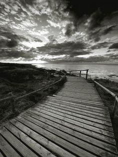 Sylt by Nina Papiorek