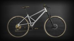 Devinci celebrates its 30th anniversary with a very limited-edition hardtail.