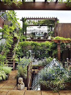 Roof Top Gardens at ModVintageLife.com