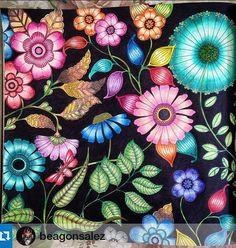 SECRET GARDEN Owl Secret Garden. Coruja Jardim Secreto. Johanna Basford Jardim Secreto, azul, lápis de cor, cores, criatividade, teria com pinturas