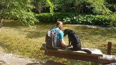 Top Ausflug: Auf dem Holzweg ins Mendlingtal | Wiederunterwegs.com Dogs, Travel, Walking, Holidays, Holiday Destinations, Hiking Trails, Viajes, Holidays Events, Pet Dogs