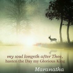 Psalms 42:1-2 (KJV)  As the hart panteth after the water brooks, so panteth my soul after thee, O God. My soul thirsteth for God, for the living God: when shall I come and appear before God?  HASTEN THE DAY MY GLORIOUS KING !  #MARANATHA