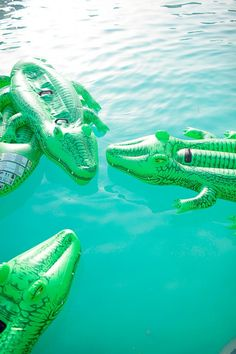 summer | crocodile pool floats