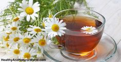 Top 10 Herbal Teas That Will Work Wonders On Your Digestion