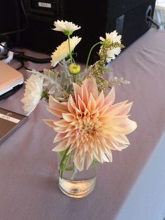 Autumn bud vase featuring dahlias and cosmos.  Grown and designed by Love 'n Fresh Flowers.