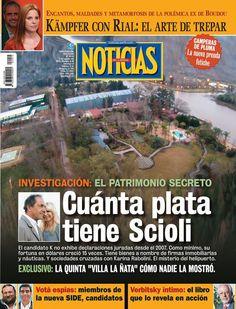 La fortuna oculta de Daniel Scioli | Revista Noticias