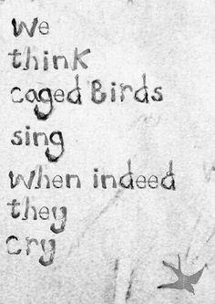 No creature is happy in a cage