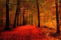 The+18+Most+Magical+Autumn+Sensations  - CountryLiving.com
