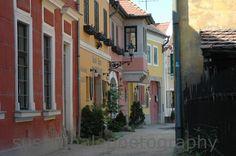 szentendre Hungary, Places Ive Been, Fine Art, Spaces, Street, Landscapes, Travel, Board, Paisajes