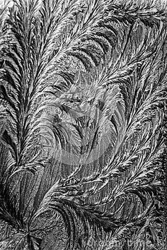 Jack frost etching beautiful pattern, converted to look like a pencil drawing with swirling patterns made by nature.
