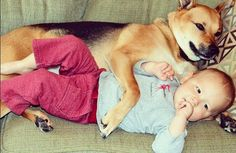 Toby, a rescue dog from Indianapolis, is best friends with his baby brother Carter. These photos will melt your heart.