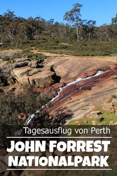 The John Forrest National Park is about 30 km east of Perth and makes a perfect day trip with beautiful bush walking. Perth Western Australia, Australia Travel, Largest Countries, Countries Of The World, Perth Australien, Parks, Kings Park, Cool Places To Visit, Day Trips