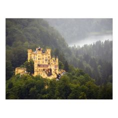 Photography Gifts, In The Tree, Bavaria, Castle, River, Architecture, Poster, Trees, Outdoor