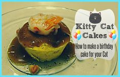 Kitty Cat Cakes How To Make A Birthday Cake For Your The